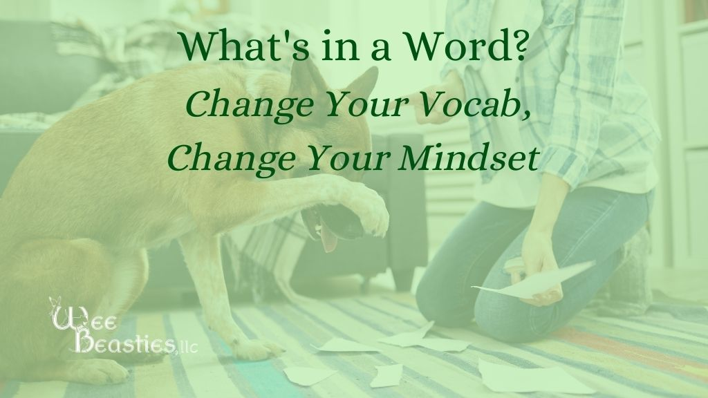 """""""What's in a word? Change your vocab, Change your mindset"""" on a background with a dog with his paw over his face and a woman shaking her finger at him"""