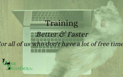 Training Better & Faster