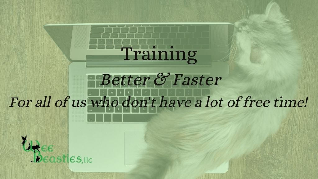 """Blog title """"Training Better & Faster for all of us who don't have a lot of free time"""""""